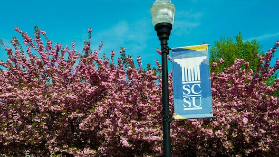 SCSU flag in front of tree
