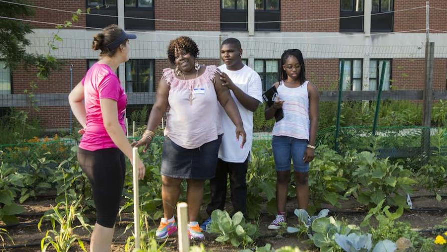 """A few people standing and talking in a community garden"""