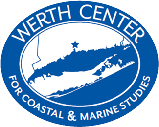 Werth Center logo